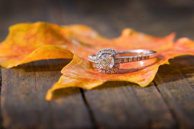 Engagements16